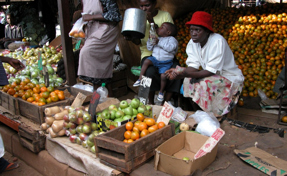 Zimbabwe resists reserve bank debt takeover for African cuisine nyc