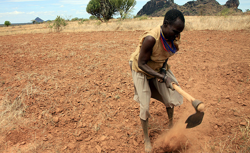 Africa digital soil mapping helps continent 39 s farmers for Soil information in english