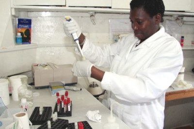 File Photo.A technician prepares blood for testing.