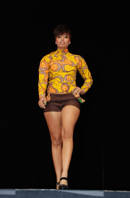 African Arts Fashion Week Dc