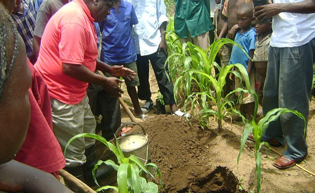 Tanzania: Nyerere's Son Leads a Five Million Tree Planting Project in Region
