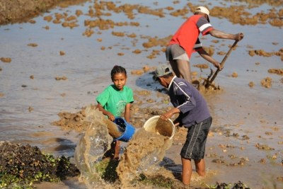 A family prepares a rice field for planting in the Madagascan capital of Antananarivo.