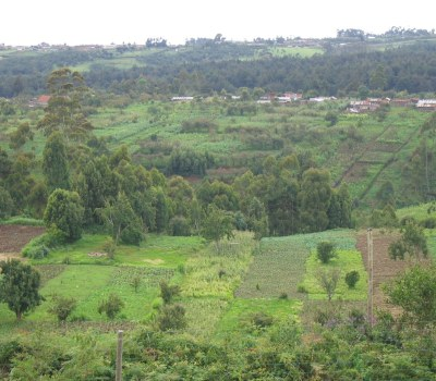 Alliance Building to Increase Farm Production and Restore Land