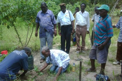 Mozambican communities planting boundary trees to mark agreed borders.