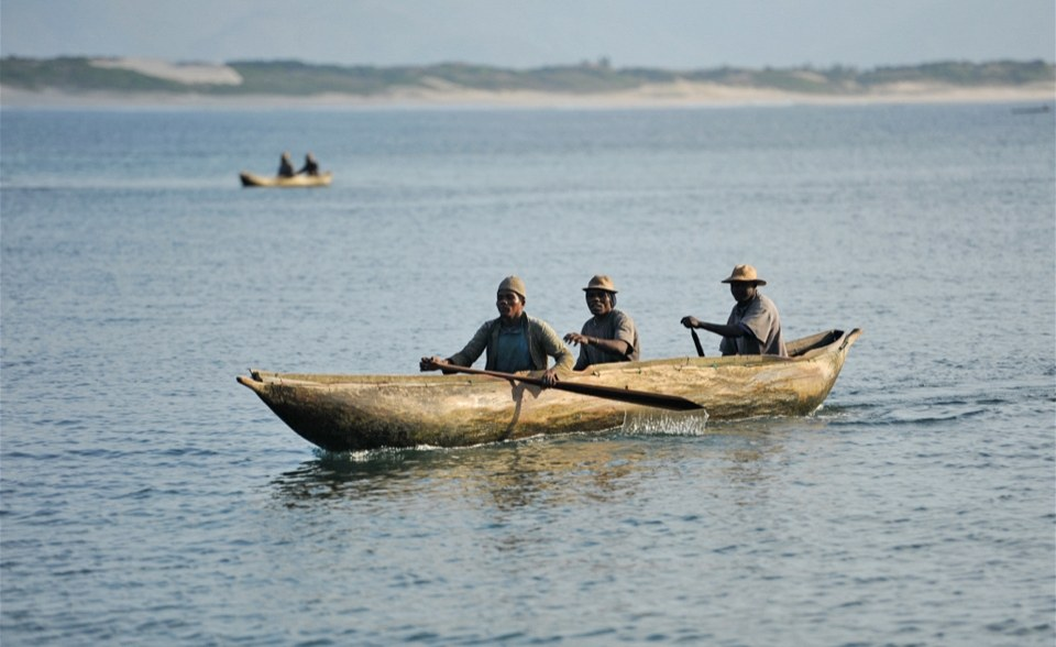 Pollution threatens fish in tanzania lake for Fish on main