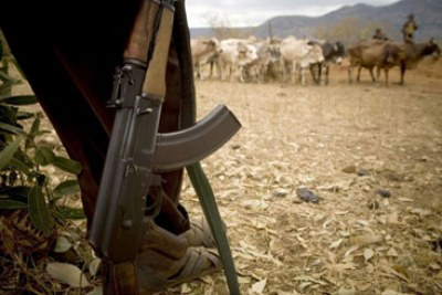 Armed herder (file photo): One person has been killed and over 3,000 displaced by bandits in Marigat, Baringo county.