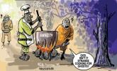 Nigeria: Amnesty Committee  Wants Boko Haram Link