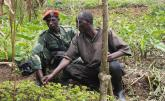 Trading Conflict for Coffee in DR Congo's North Kivu