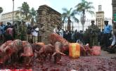 Blood, Pigs in MPs' Pay Protest