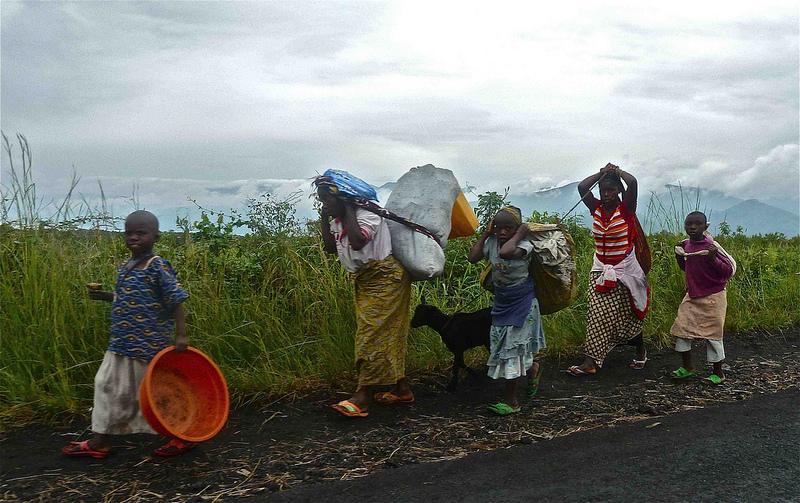 Essay on darfur crisis
