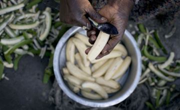 Food: The Centre of our Lives and Our Futures