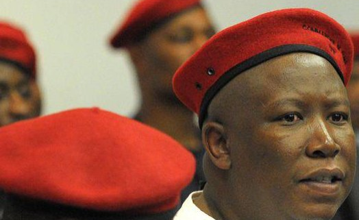 South Africa: DA Challenges Malema to Apologise to Nation ...