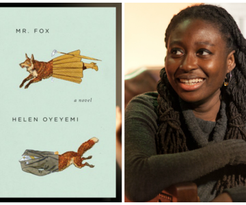 Top 15 African Literary Accomplishments of 2013