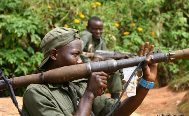Offensive contre les FDLR au Kivu: Une diversion