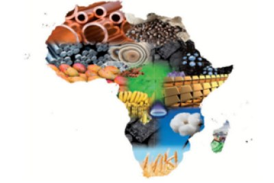 Africa Continent Trade
