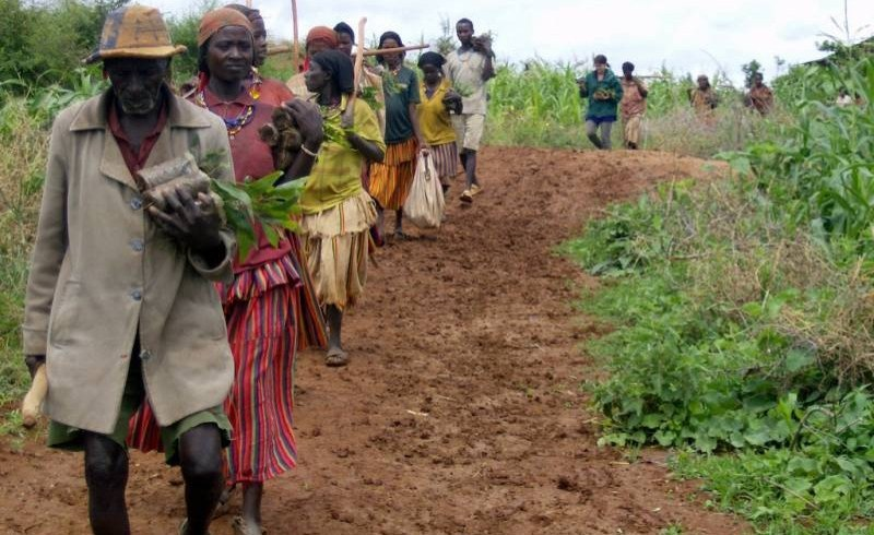the relationship between tree resources and rural livelihoods Resilient rural livelihoods through eco-restoration and sustainable  fertile soil is  washed away because the protective tree and grass cover vanishes  key to  enabling villagers in actively managing their natural resources for.