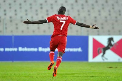 Namibian player celebrates (file photo).