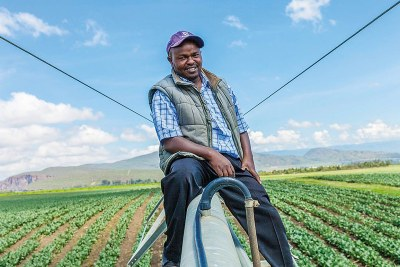 Charles Maina has been working on Gorge Farm for 17 years – so it is hardly surprising that the farm has long since become more than a workplace for the Kenyan. The Gorge Farm outside Naivasha in Kenya ... uses GE's Jenbacher gas engines to pump power back into the community's inconsistent electricity grid.