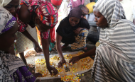 Malnutrition, Famine Threatens Parts of North-East Nigeria