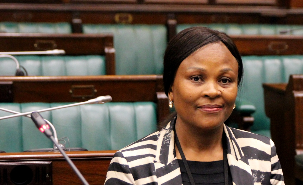 South Africa: President Ramaphosa Wins Stay on Public Protector's Remedial Action