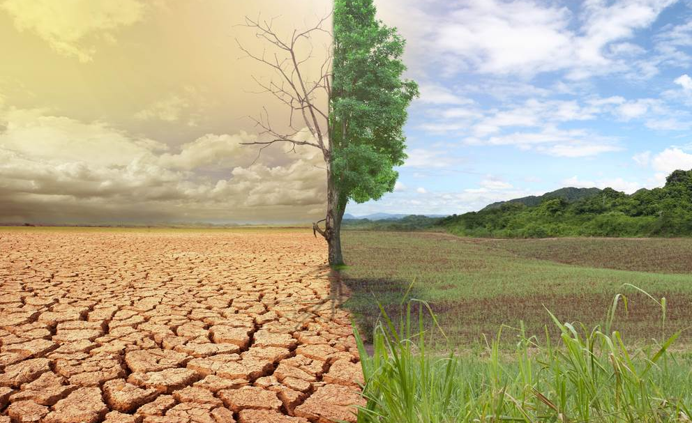 Africa: Changing Climate Is Already Changing Us - Are We Prepared?