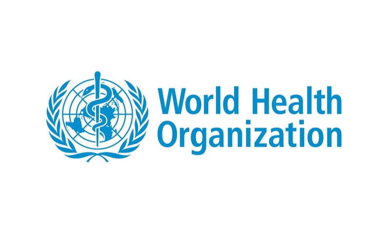 world health organization essay The world health organization (who) is the directing and coordinating authority on international health within the united nations' system who experts.
