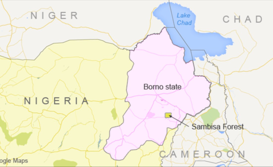 Nigeria: Military Hands Over 86 Boko Haram Child Fighters to Borno Govt for Rehabilitation - AllAfrica - Top Africa News