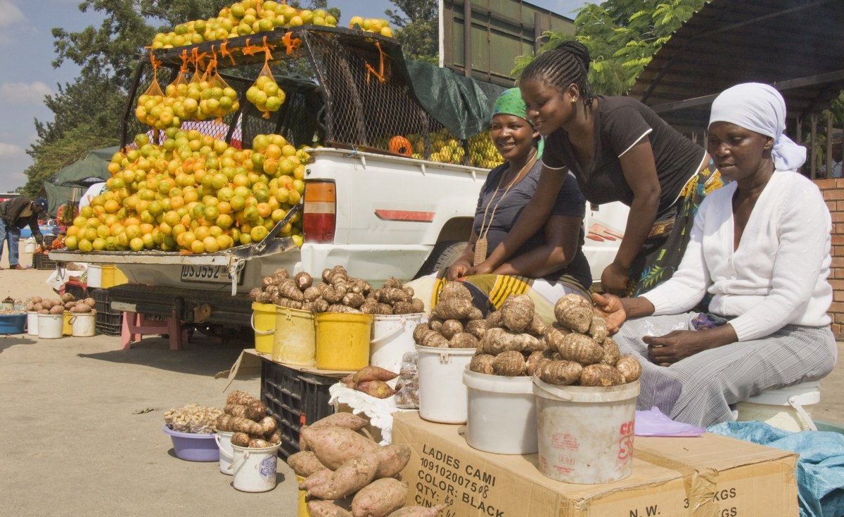 South Africa: Informal Sector Creates Jobs, but Shouldn't Be Romanticised