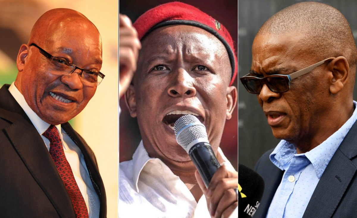 South Africa: Malema Now Less Popular Than Zuma, Magashule At Rock Bottom - Survey