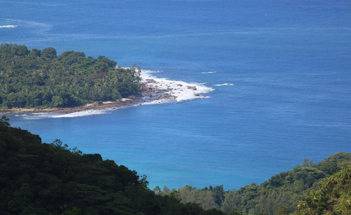 Seychelles: 100,000 Trees to Be Planted in Seychelles By Xmas With Help From Jobless Tourism Workers