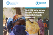 UN agencies warn of risk of famine in four countries. A joint FAO-WFP analysis of food insecurity hotspots as the coronavirus crisis unfolds - November 2020 edition.